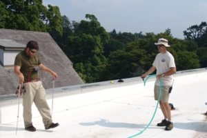 Electric Field Vector Mapping All Waterproofing